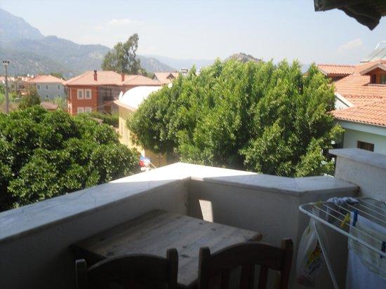 Sahin, Apartments: across the trees