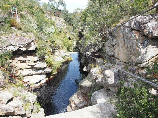 Tsitsikamma Falls Adventures: Zippppppppp
