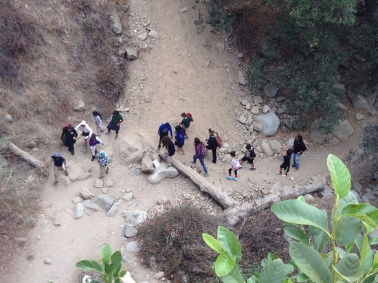 Class groups are escorted by Eaton Canyon Nature Center personnel.