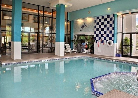 Quality Inn and Suites : Pool