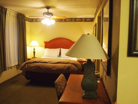 Homewood Suites by Hilton Indianapolis-Airport/Plainfield: Sleeping area