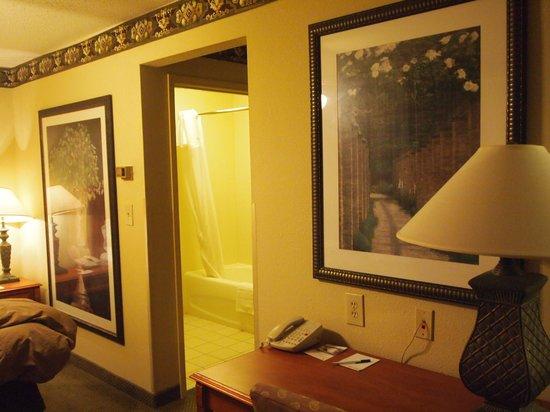 Homewood Suites by Hilton Indianapolis-Airport/Plainfield: Bath