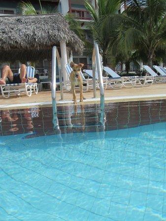 Memories Paraiso Beach Resort: I fell in love!!