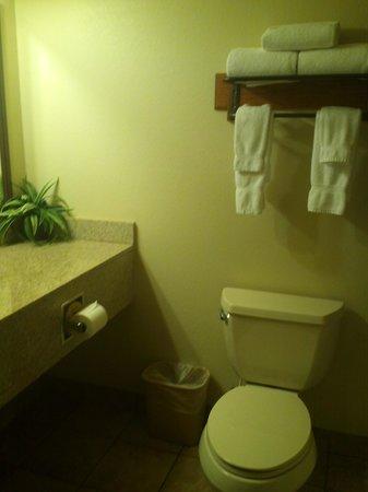 Brookstone Lodge: Bathroom has shower/tub combination