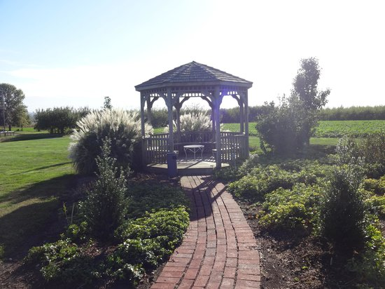 Orchard Inn: the gazebo