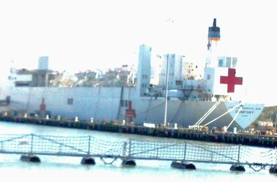 Victory Rover Naval Base Cruises: Floating Hospital
