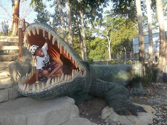 Parque Temático Hacienda Nápoles : un cocodrilo le come a mi hijo pequeño