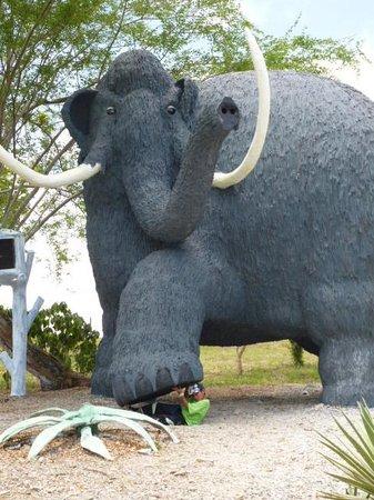 Parque Temático Hacienda Nápoles : Mamut pisa Hijo