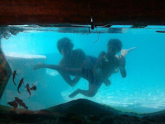 Puerto Triunfo, Colombia: Hijos en piscina