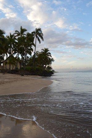 Maui Sunseeker LGBT Resort: across the street from the resort