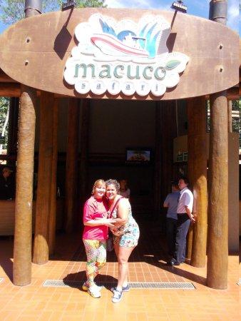 Thermas Parque Aquático Cataratas: macuco