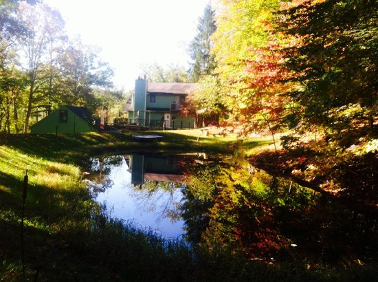 Lil Black Bear Inn: View from the swing next to the pond on the grounds of the Always Inn