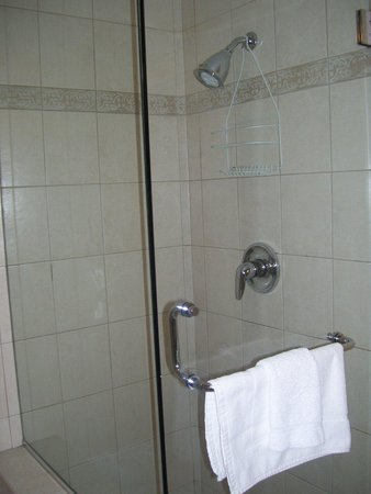SpringHill Suites Old Montreal: Shower