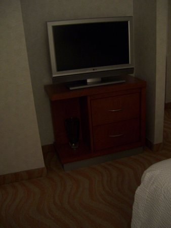 SpringHill Suites by Marriott Old Montreal : Other TV