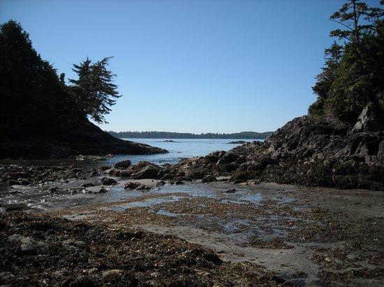 Best Western Tin Wis Resort: Ocean View
