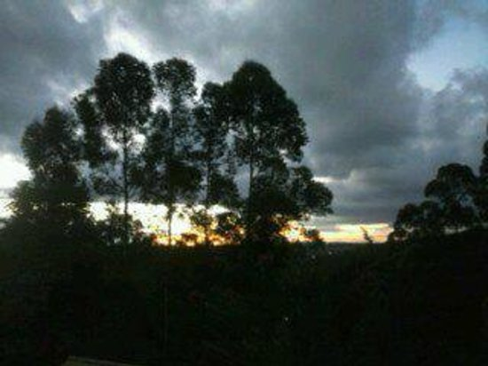 Pousada Luz e Paz : Natureza exuberante