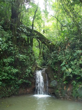 Xandari Resort & Spa: waterfall along hiking trail