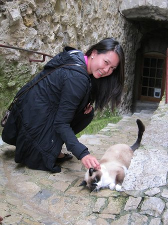 Experience Provence Tours: Furry fun in Seguret