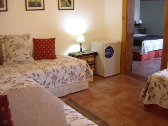 Huellas Andinas Apart Hotel : Habitación
