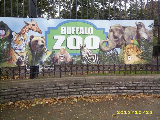 The Buffalo Zoo: Sign in front