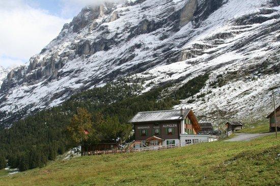 Grindelwald, Suiza: Alpiglen from Train