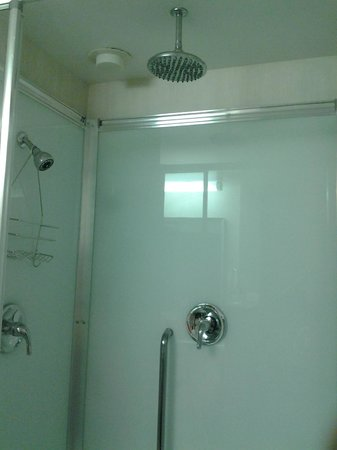 Comfort Suites : Double Shower Heads Shower! Available in Jacuzzi Suite!