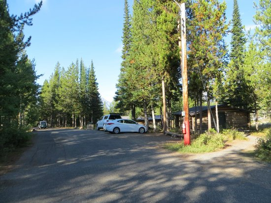 Colter Bay Village: Colter Bay Cabins