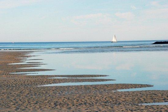 Ogunquit Beach : Beach at low tide