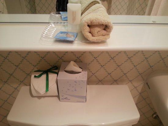 University Inn Washington DC: Bathroom Amenities