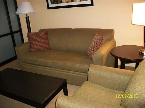 Comfort Suites Helena: Comfortable sofa bed