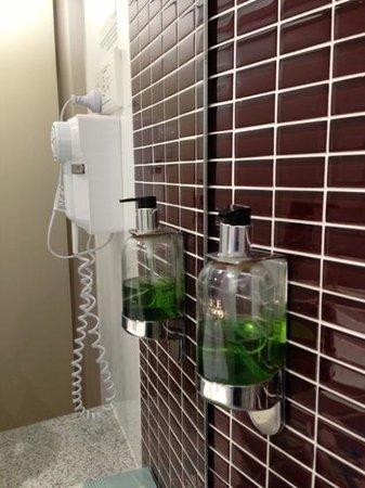 The Sydney Boulevard Hotel: Hair dryer and Hand wash gel