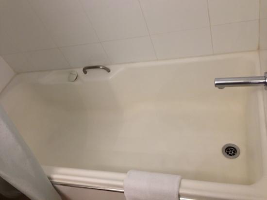 The Sydney Boulevard Hotel: Big size bath tub ! can swim.
