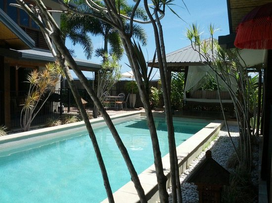 Manta Ray Bed and Breakfast: Pool area