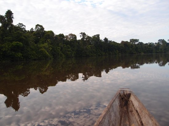 Abundancia Amazon Eco Lodge: Amazing water reflection