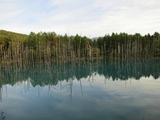 Blue Pond: 全景