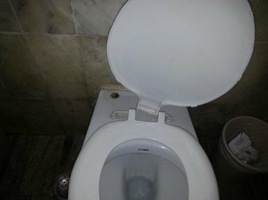 Hotel Jayshree: Broken Toilet Seat