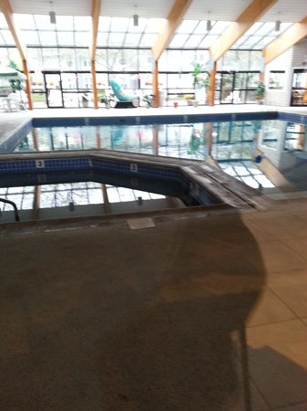 Holiday Inn Hyannis: Good size pool