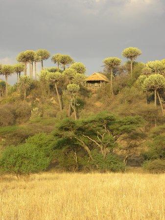 Ol Mesera Tented Camp: je tent bekeken vanuit de vallei