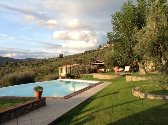 Agriturismo I Moraioli: the backyard area