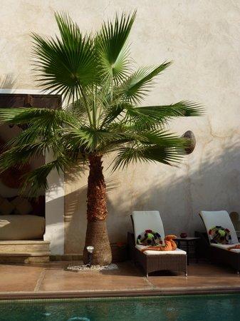Riad Charai: Pool im Innhof mit bequemen Liegen