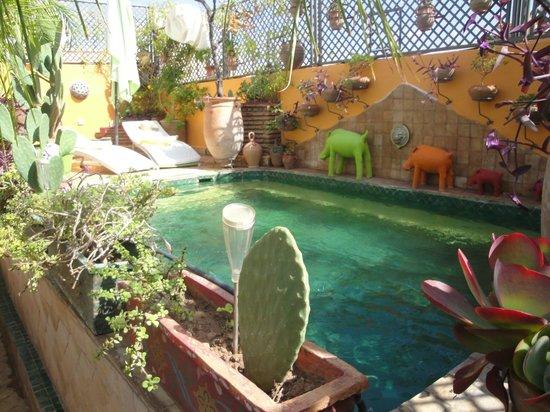 Riad CharCam : La piscine