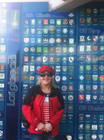 Croke Park Stadium Tour & GAA Museum: badges representing every GAA club