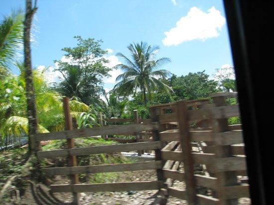 El Muro Lanquin: View in room