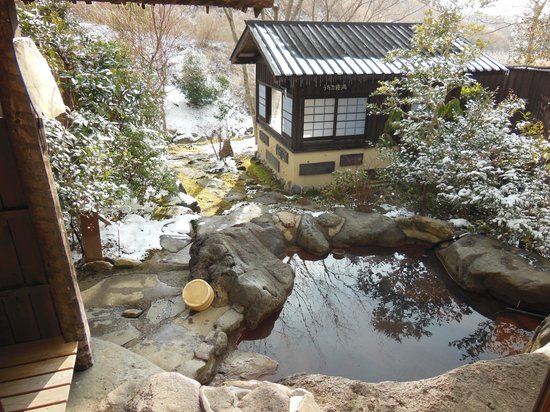 Hozantei: 部屋から見る露天風呂