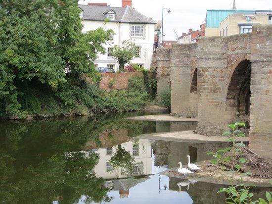 Brandon Lodge: Bridge