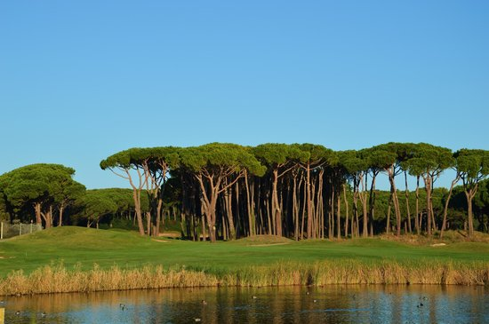 """DoubleTree by Hilton Hotel & Spa Emporda : Le parcours """"Forest"""""""