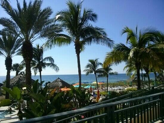 The Ritz Carlton Sarasota: View from the restaurant at the Beach Club