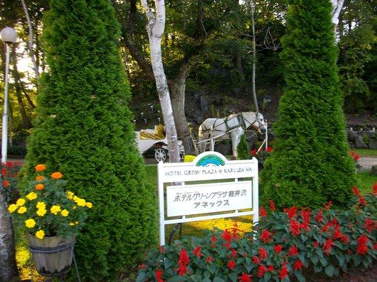 Hotel Green Plaza Karuizawa: 園地
