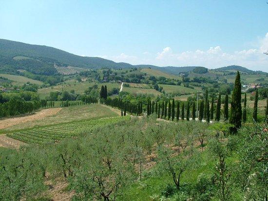 Podere Poggiluglio: View from the property