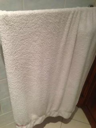 Red Rooster Roost : Bath Towels that had better days.